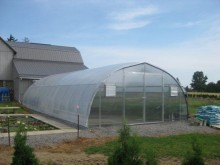 Commercial Cold Frame